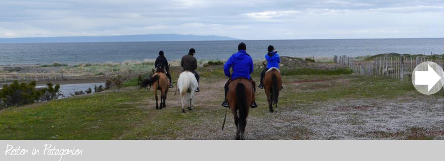 Reiten in Patagonien