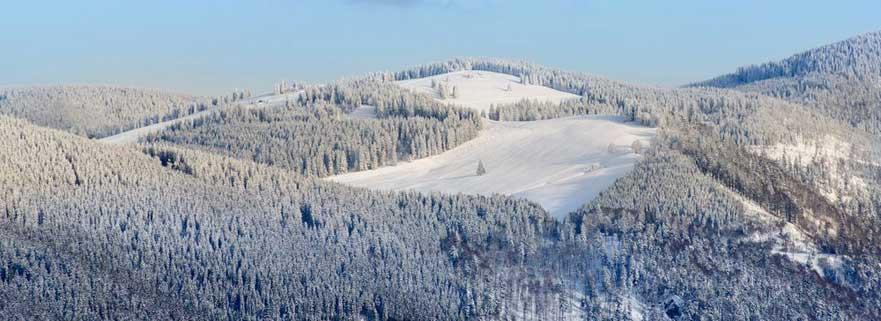 Feldberg: Höchster Berg des Schwarzwalds