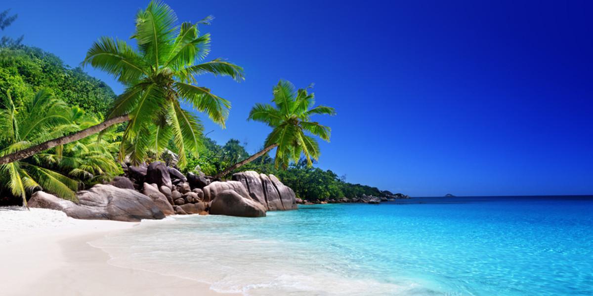 Urlaub in den Malediven: Strand, Palmen und Meer