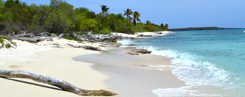 Ein Traumziel für viele: Die Dominikanische Republik