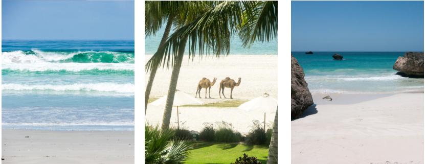 Strandurlaub in Salalah Oman Urlaub am Strand