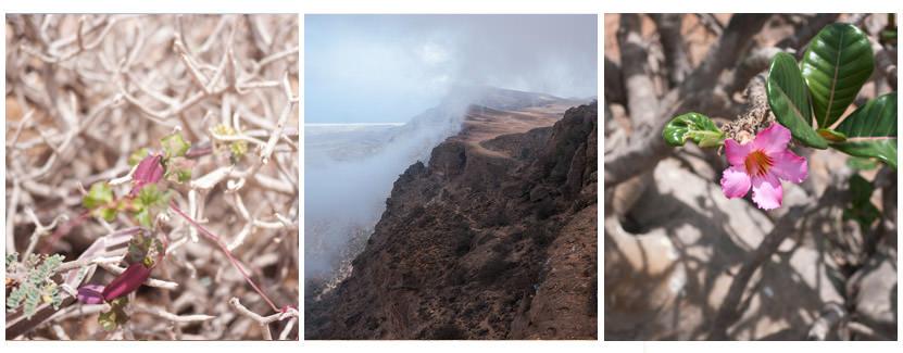 Bergwelt in Salalah