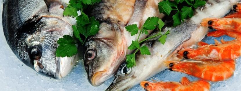 Für Fischfans ist Portugal das perfekte Gourmet-Ziel