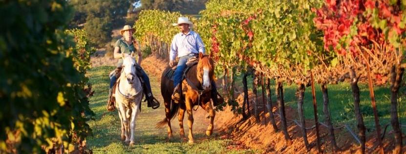 Urlaub auf der Pferderanch in den USA
