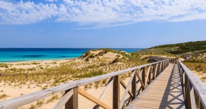 Vielseitige Lieblingsinsel: Mallorca