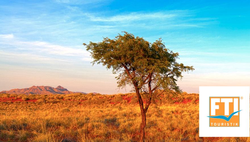 Afrikanische Savanne