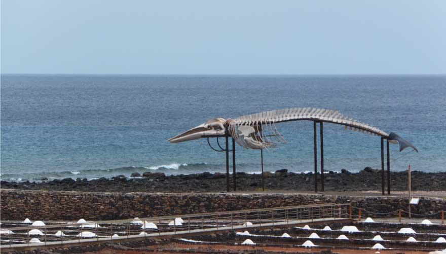 Salinenmuseum auf Fuerteventura