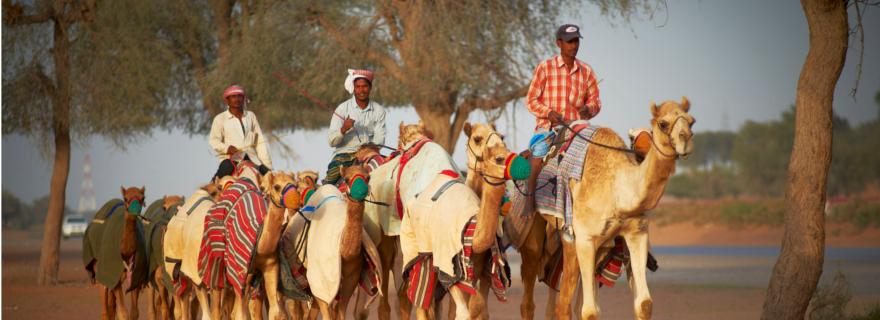 Wüste in Ras al Khaimah