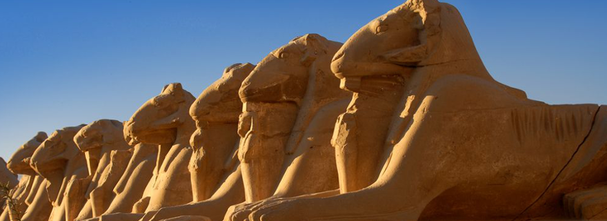 sphinxes in Luxor