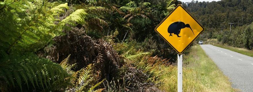 NZL_shutterstock_15473386