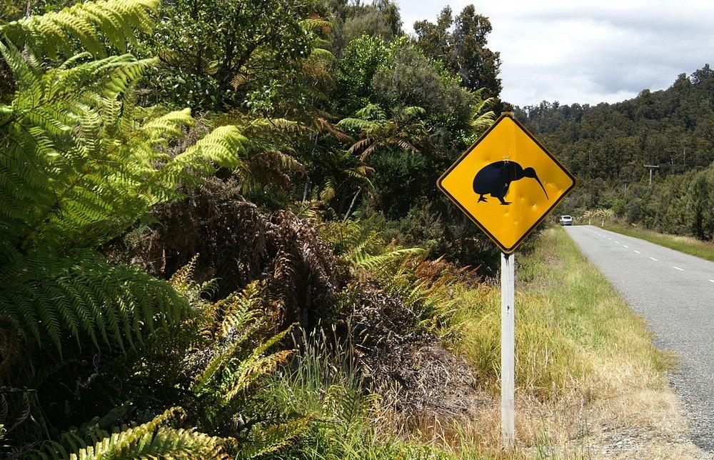 Neuseeland Reisetipps Sehenswurdigkeiten Fti Reiseblog