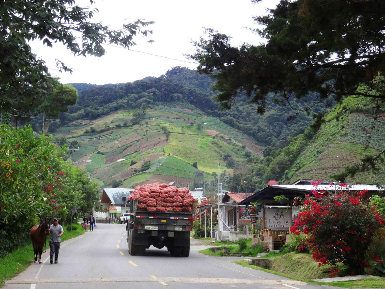 Guadeloupe Chiriqui