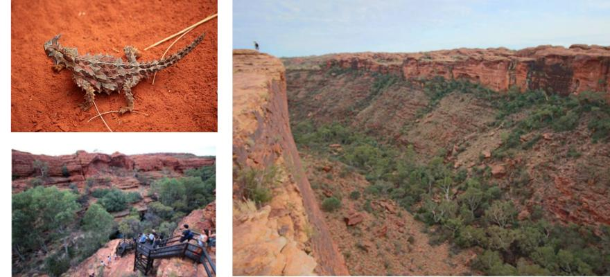 Kings Canyon, australisches Outback