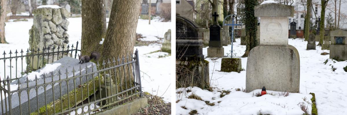 München der Südfriedhof