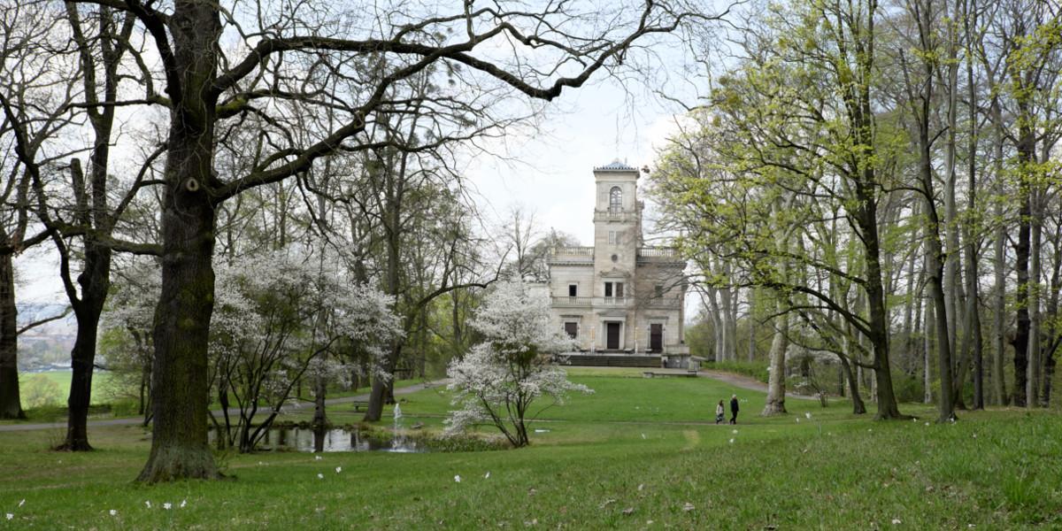 Dresden Natur