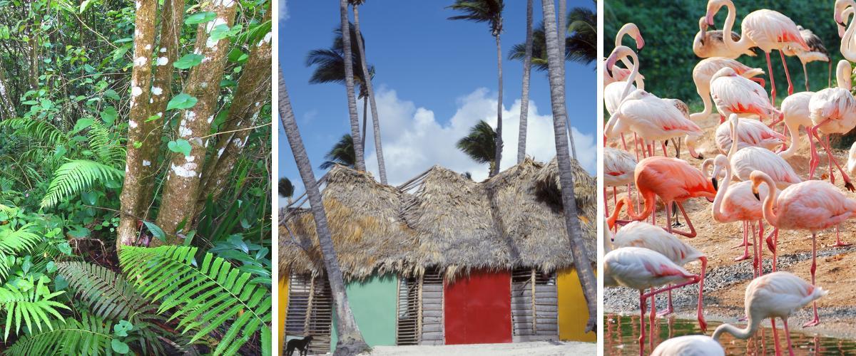 Viele Möglichkeiten des Vergnügens gibt es in der Dominikanischen Republik.