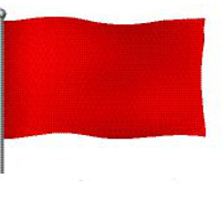 Bedeutung rote Flagge am Strand