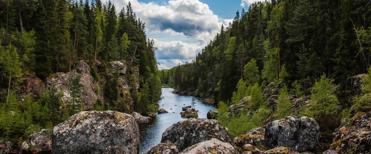 Fluss-Schweden