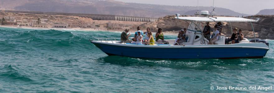 Delphin Ausflug Salalah