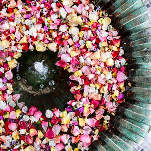 ANIMA, Marrakesch, Rosenblüten