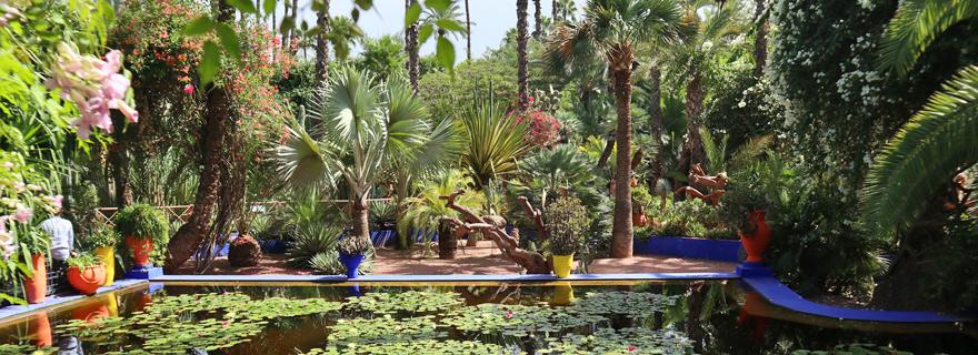 Marrakeschs Gärten
