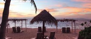 Palme Meer Sonnenuntergang