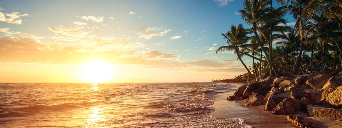 Meer Strand Sonne Palmen
