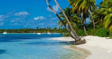 Palmen Strand Meer