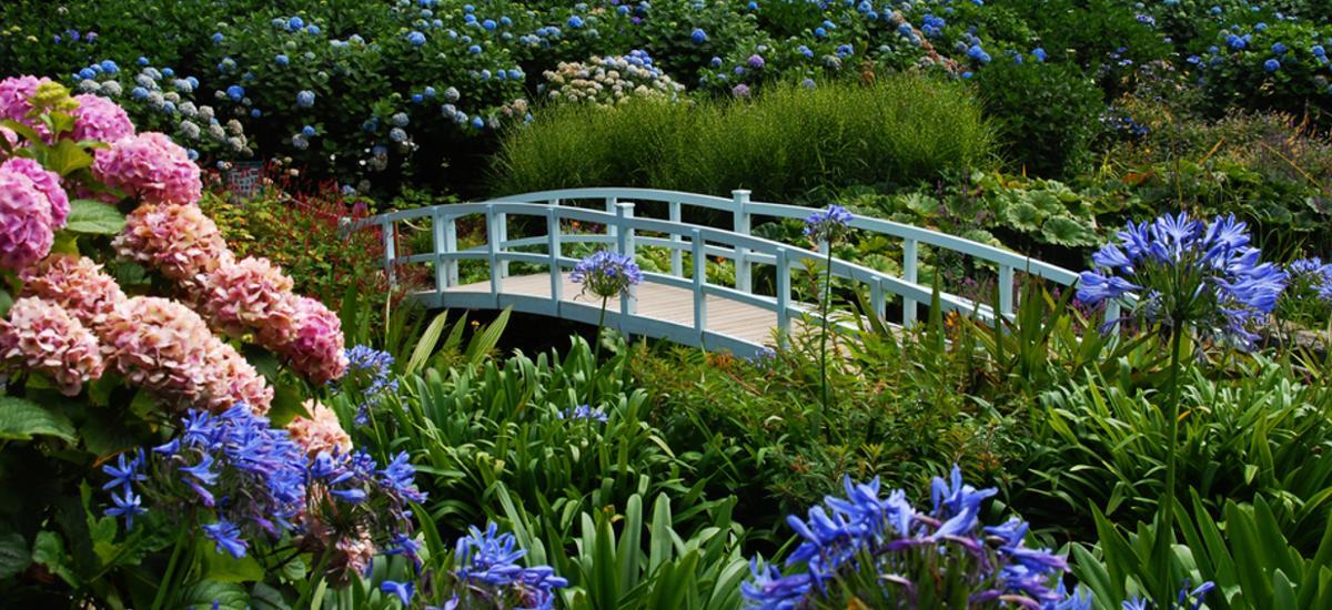 Trebah Garden Cornwall