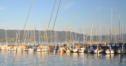 Steg für Boote am Bodensee