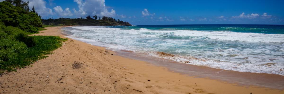 Strand Kauai