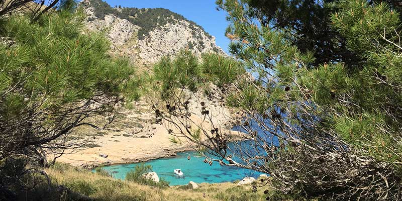 Bucht bei Alcudia