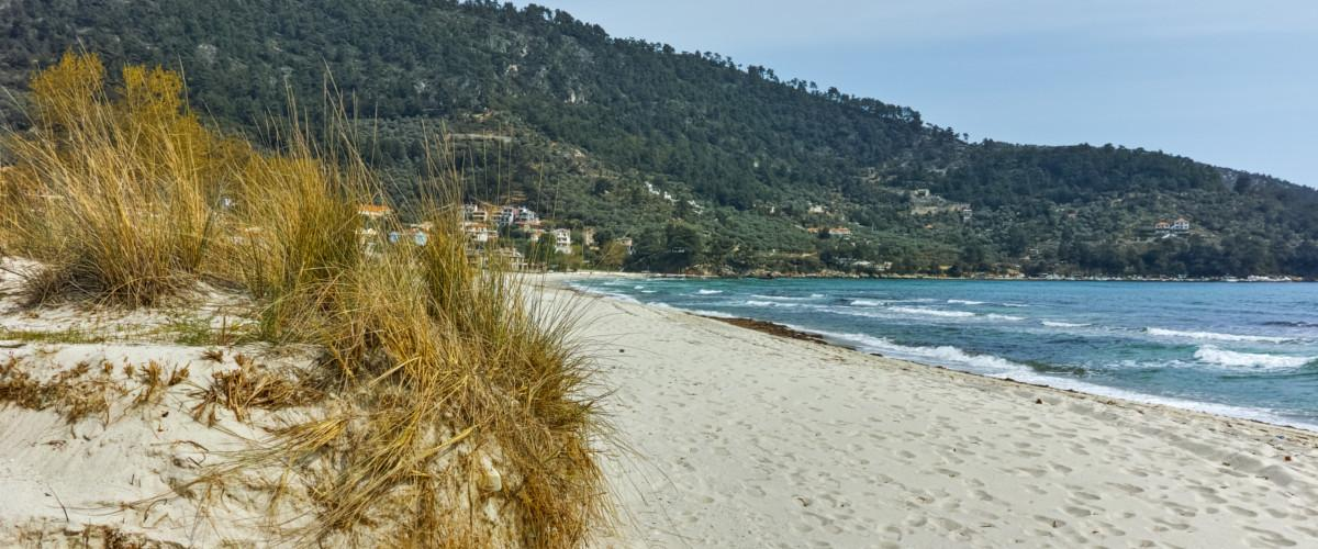 Der Golden Beach in Thassos.