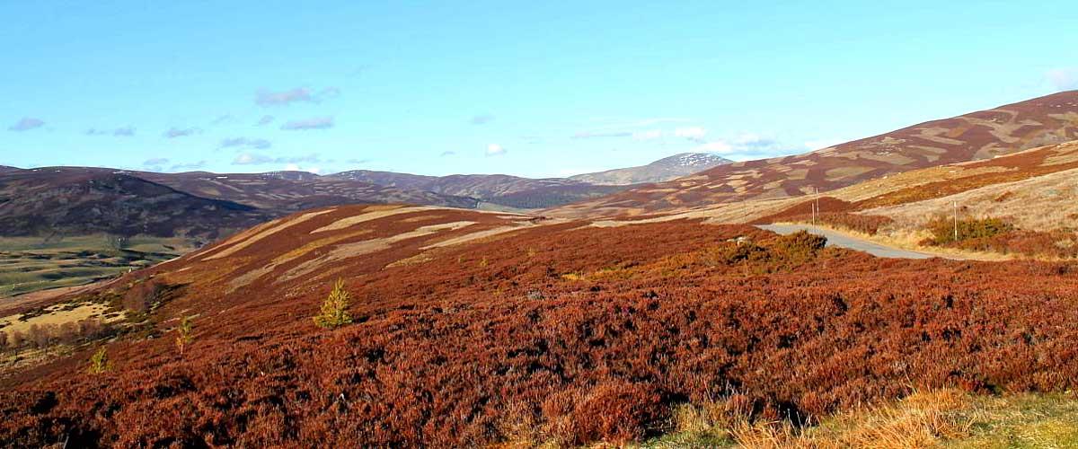 Schottland Lowlands