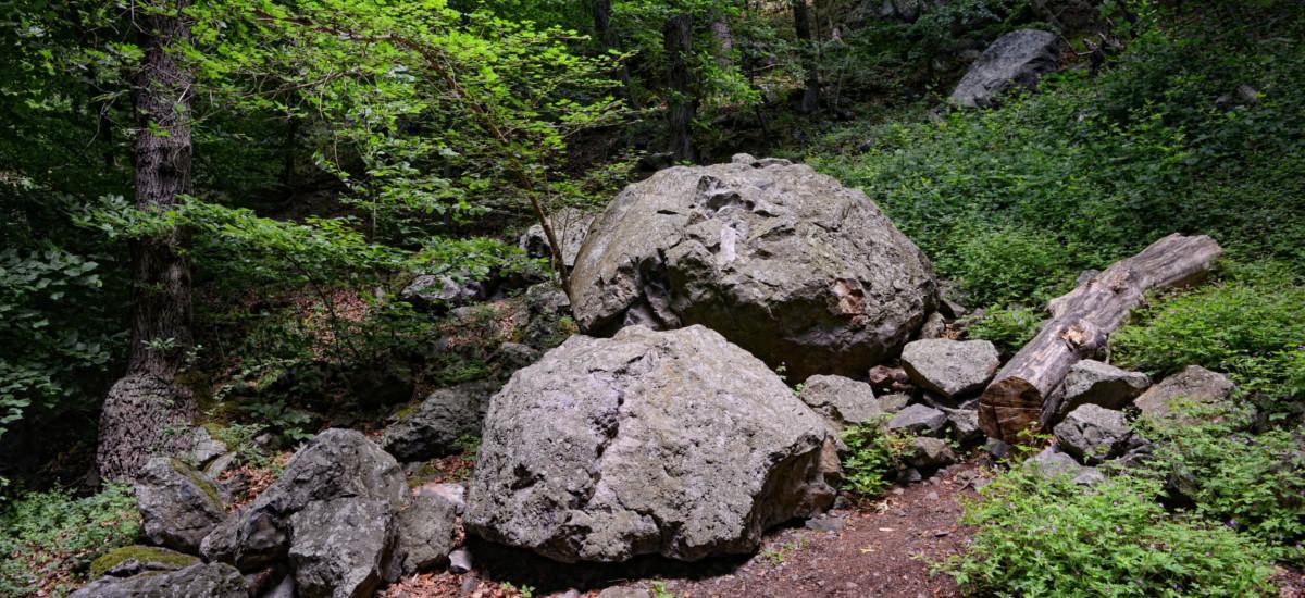 Der Natur-und Geopark Vulkaneifel.
