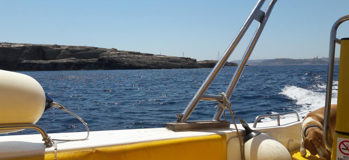 Bootsfahrt zur Insel Comino - Erkundung der Küste und der Lagunen