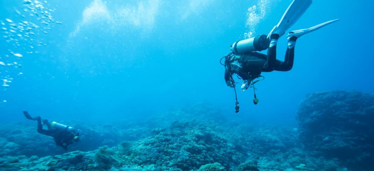 Taucher entdecken die Unterwasserwelt von Matla