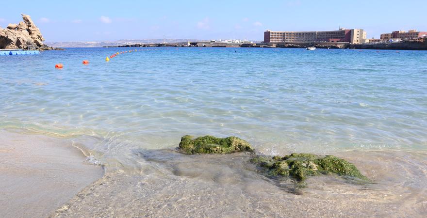 Die Paradise Bay zählt zu den schönsten Stränden auf Malta
