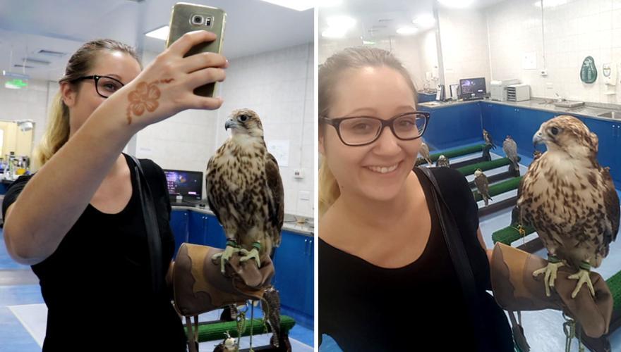 Selfie mit Falke Abu Dhabi
