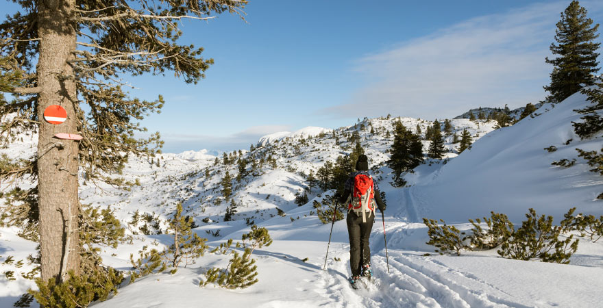 Schneeschuhwanderung in den Bergen