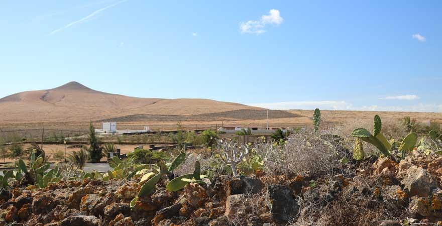 landschaft auf fuerteventura