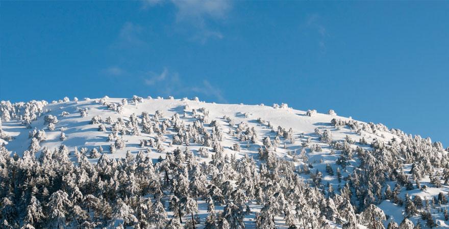 Troodos Gebirge auf Zypern im Winter