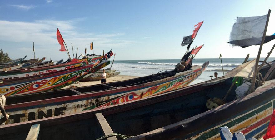 bunte Fischerboote in Gambia