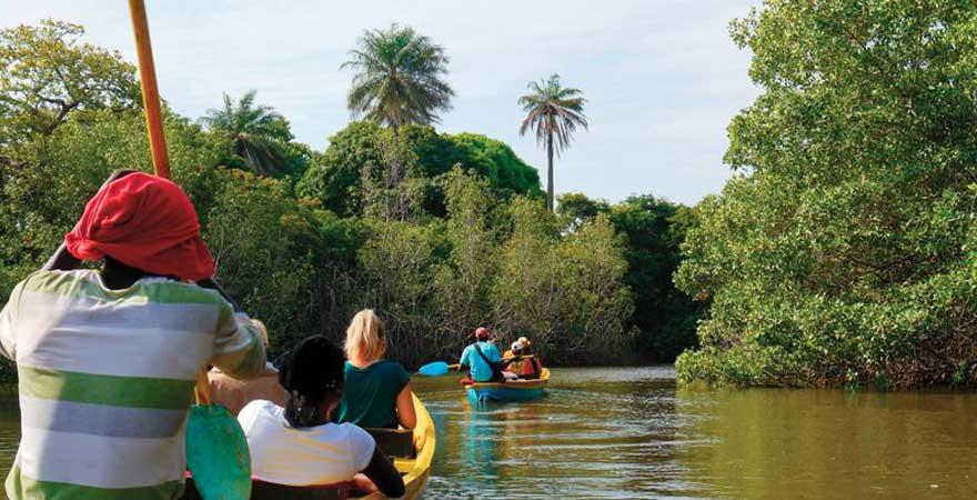 kajak-tour auf dem gambia river