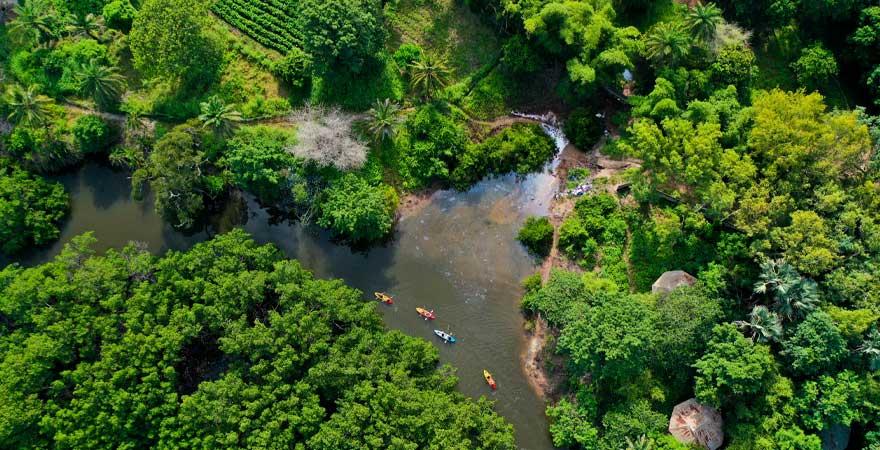 Kajaktour auf dem gambia river