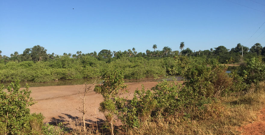 Landschaft in Gambia