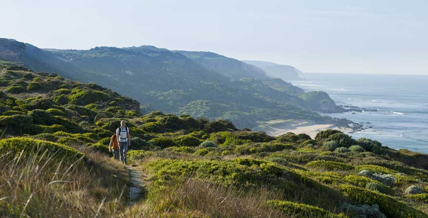 Wanderung an der Küste in Victoria, Australien