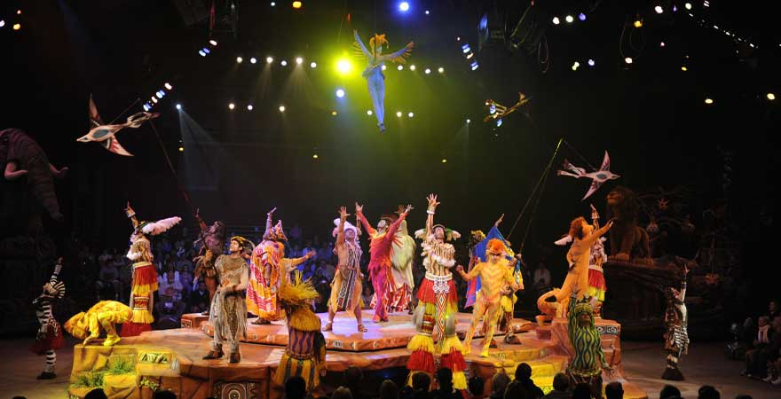 Festival of lion king