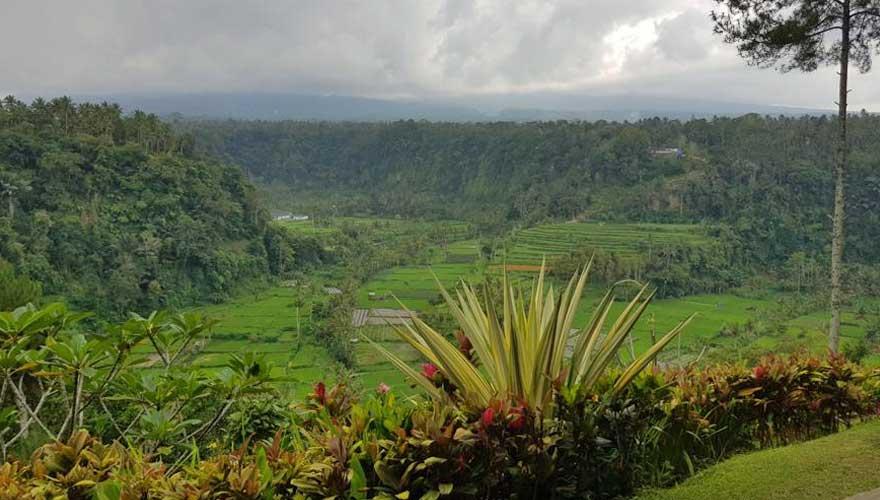 Blick auf Reisterrasse