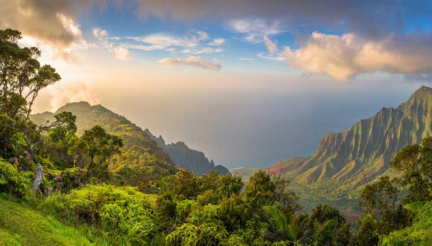 Landschaft in den Bergen Kauai